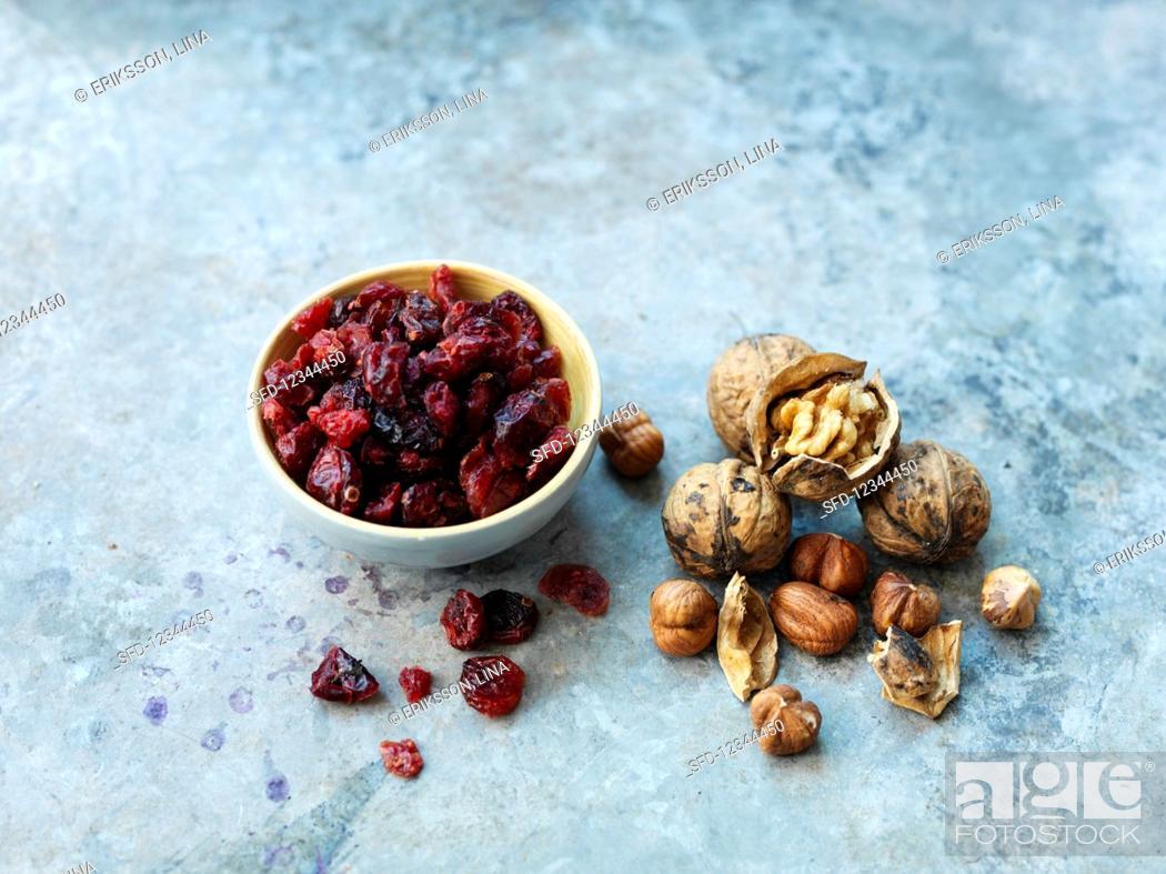 Stock Photo: Walnuts, hazelnuts and dried cranberries.