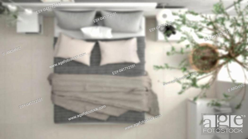 Stock Photo: Blur background interior design, minimalistic modern bedroom with window, chest of drawer and big olive tree, concrete wall.