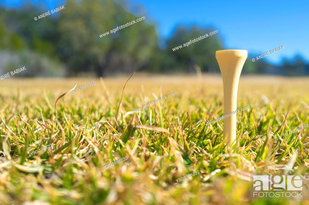 Stock Photo: Close up of tee on a golf course, Texas, USA.
