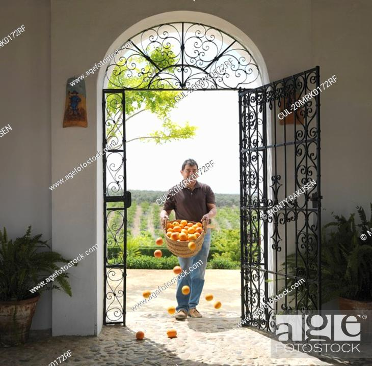 Stock Photo: Man with basket full of oranges falling.