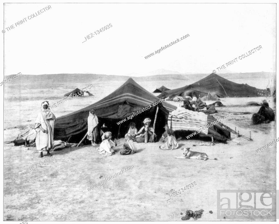 Caravan Camp Sahara Desert Late 19th Century Berber Or Bedouin