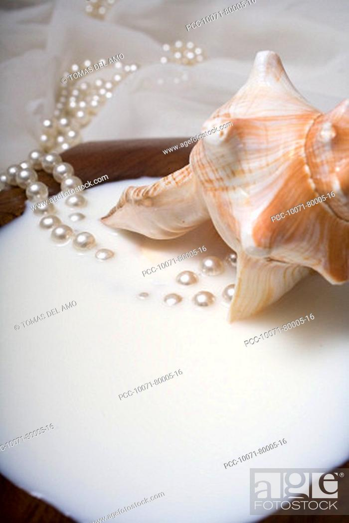 Stock Photo: Spa elements, koa bowl filled with milk, garnished with a conch shell and a pearl necklace.