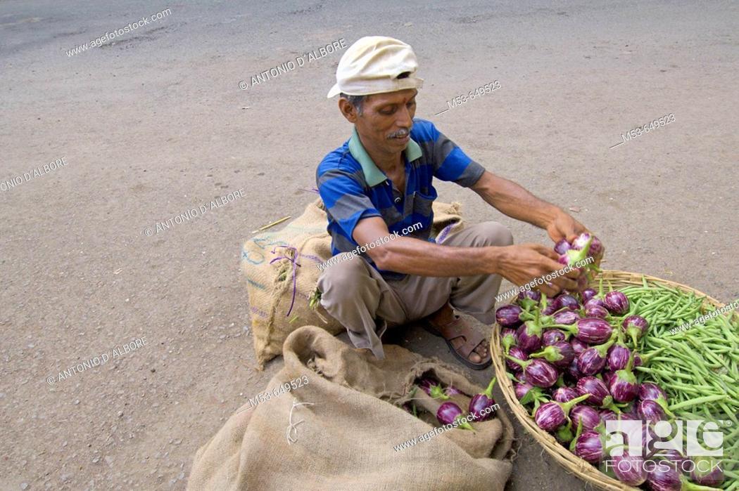 Stock Photo: an indian man sell eggplants and string beans in south mumbai. mumbay city. maharashtra. india. asia.
