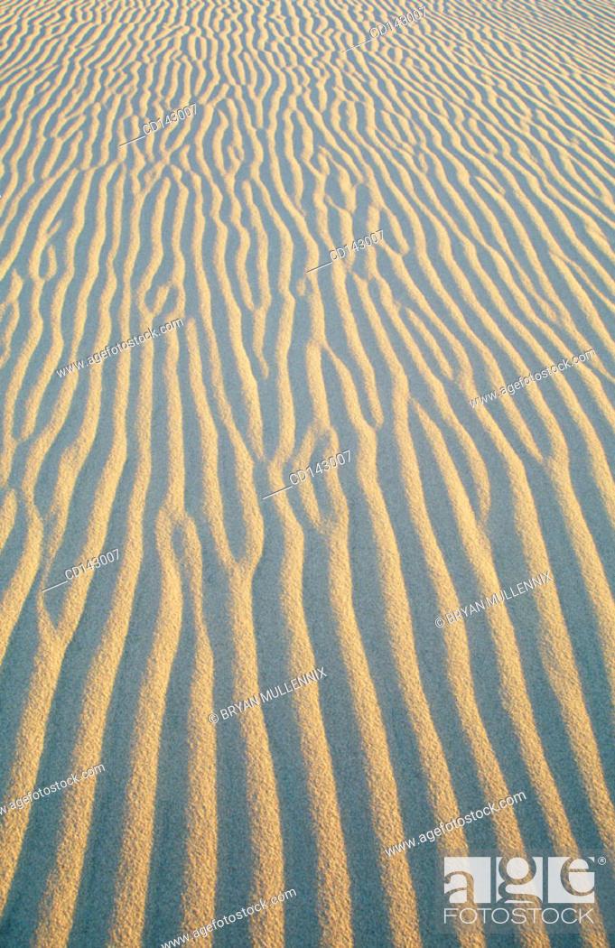 Stock Photo: Sand dunes.