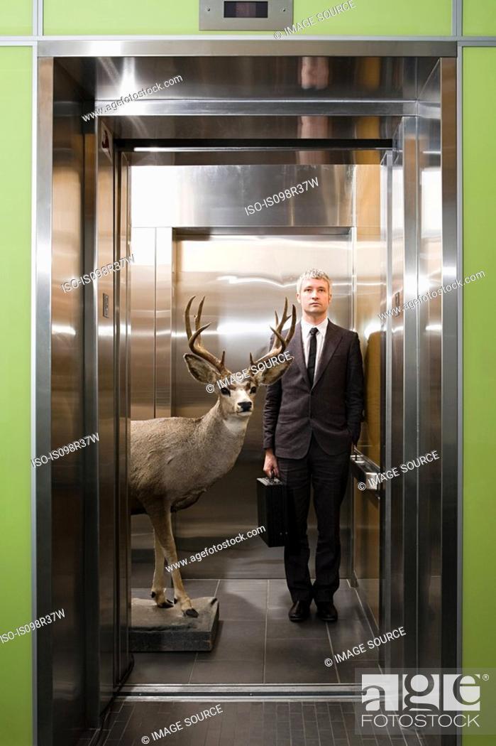 Stock Photo: Businessman and deer standing in elevator.