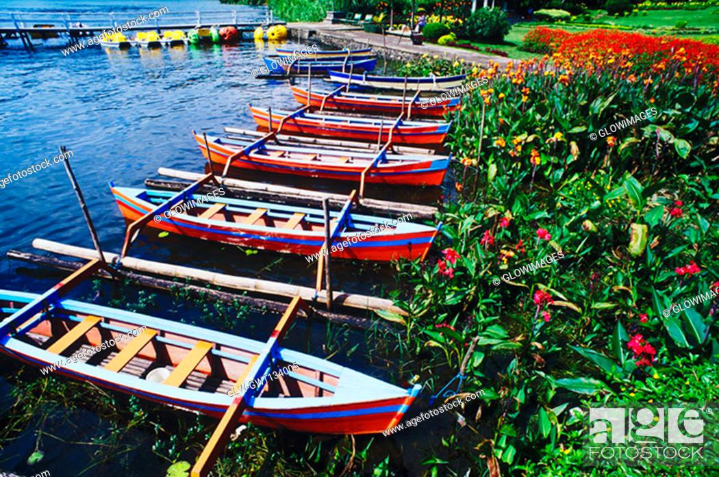 Stock Photo: High angle view of rowboats moored at a riverbank, Bali, Indonesia.