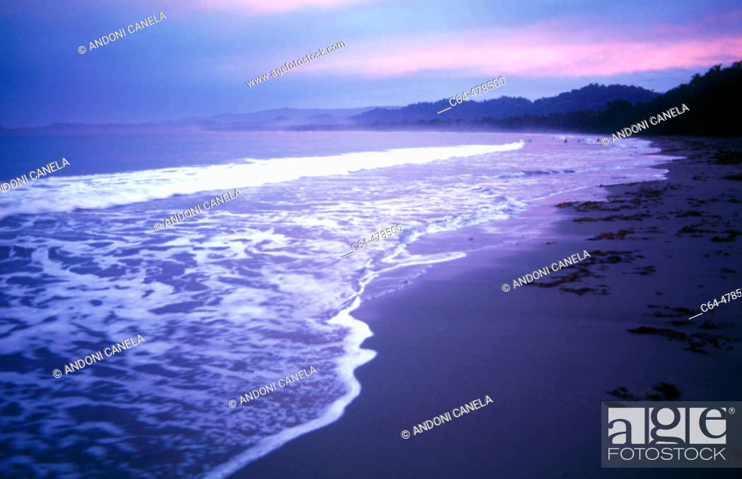 Stock Photo: Cahuita National Park. Costa Rica.