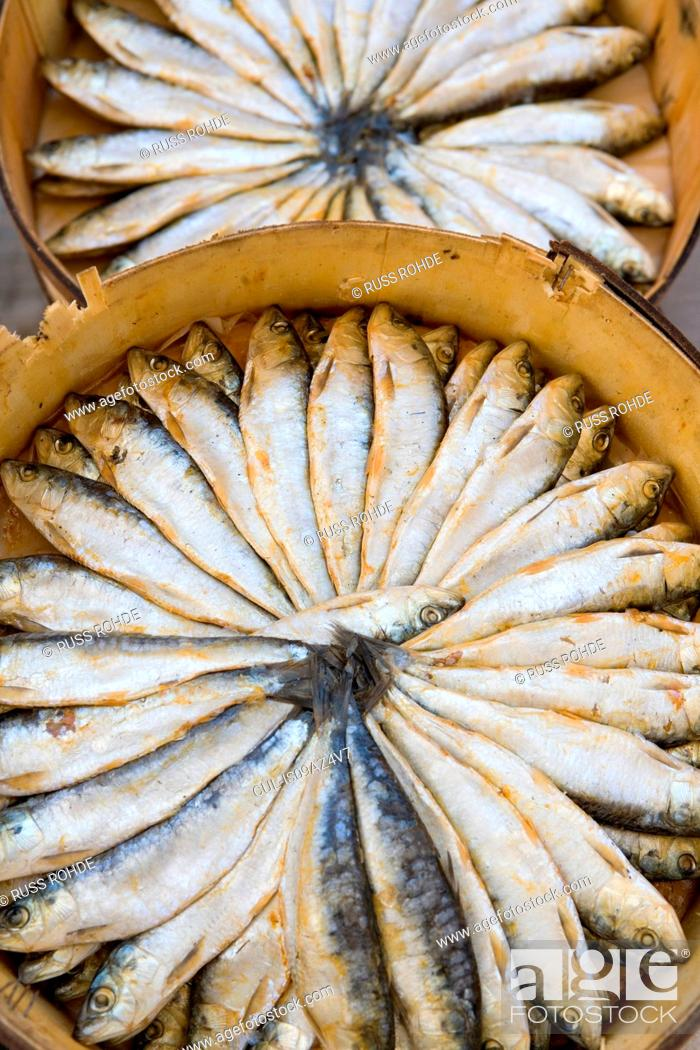 Stock Photo: Overhead view of two circular boxes of fresh sardines.