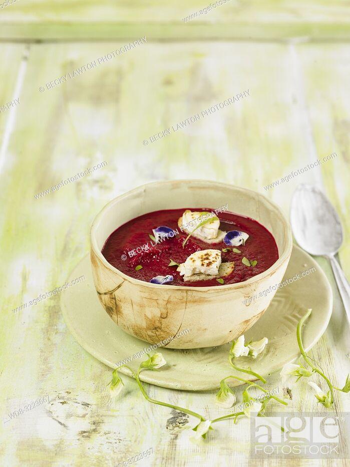 Stock Photo: crema fria de remolacha / Beet cold cream.