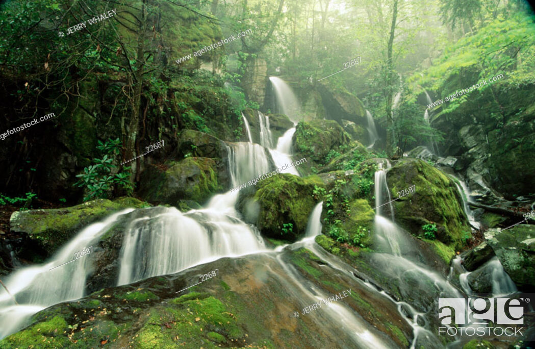 Stock Photo: Cliff Branch Falls. Great Smoky Mountains NP. Tennessee. USA.