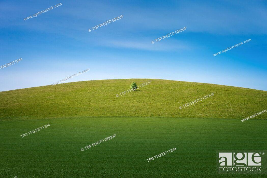 Imagen: hulunbeir grasslands;Inner mongoliaChina.