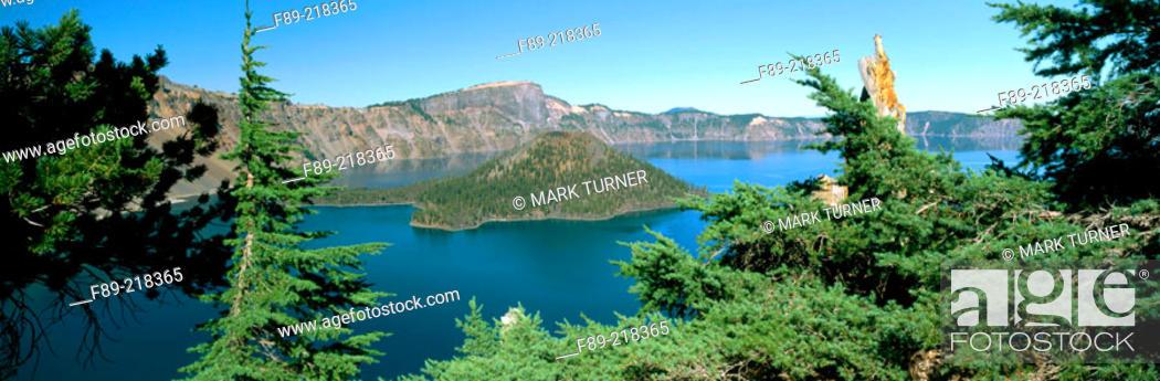 Stock Photo: Wizard Island in Crater Lake framed by Mountain Hemlocks (Tsgua mertensiana). Crater Lake National Park. Oregon. USA.
