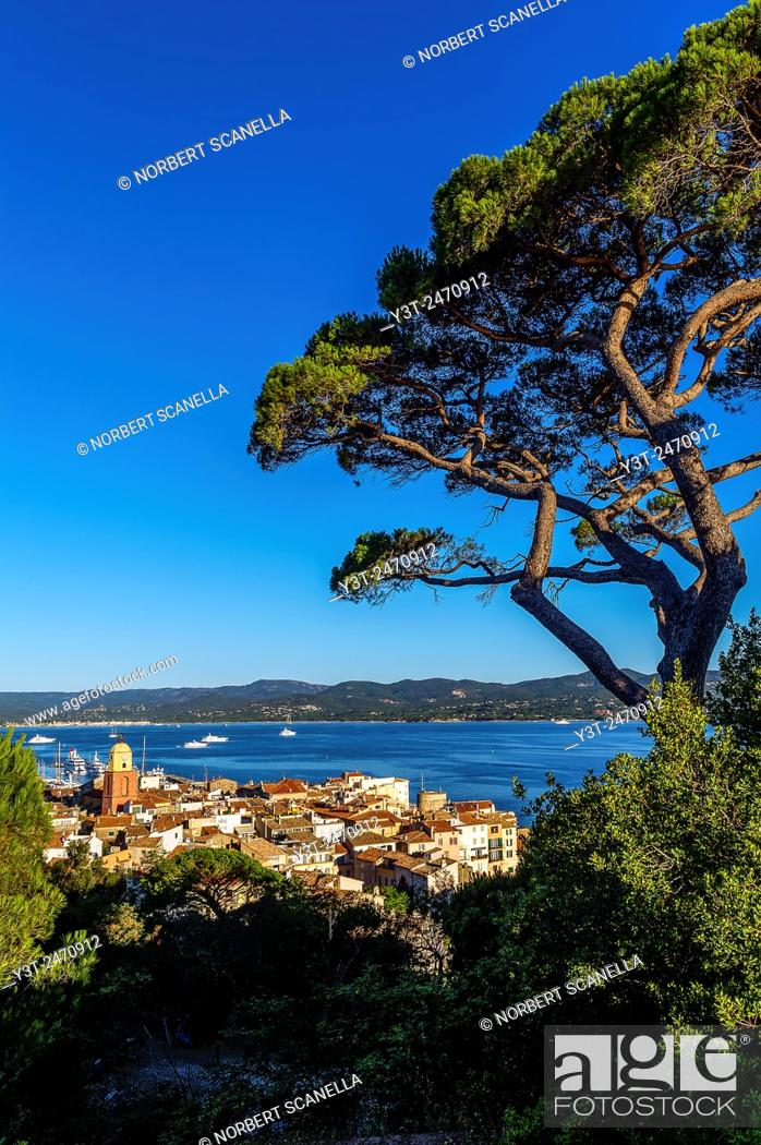 Stock Photo: Europe, France, Var, Saint-Tropez. The village and the Gulf of Saint-Tropez.