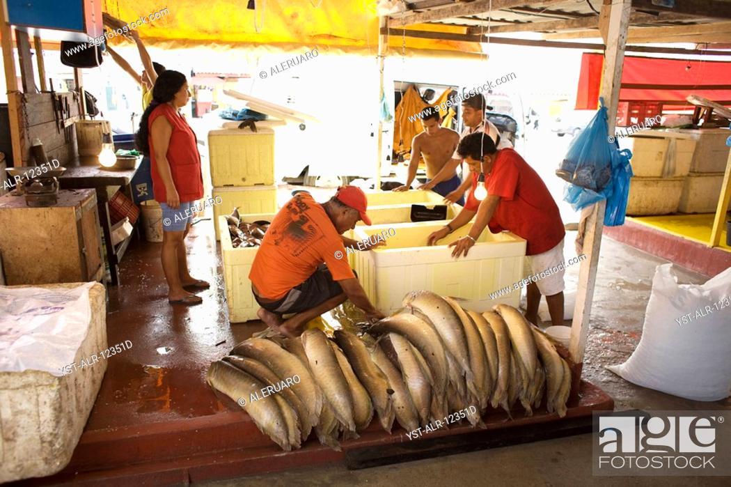 Stock Photo: Fresh fish, Porto, Amazônia, Manaus, Amazonas, Brazil.