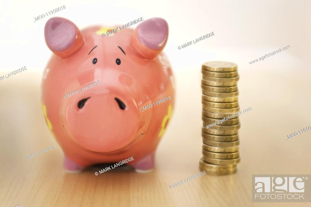 Stock Photo: Piggy Bank and Money.