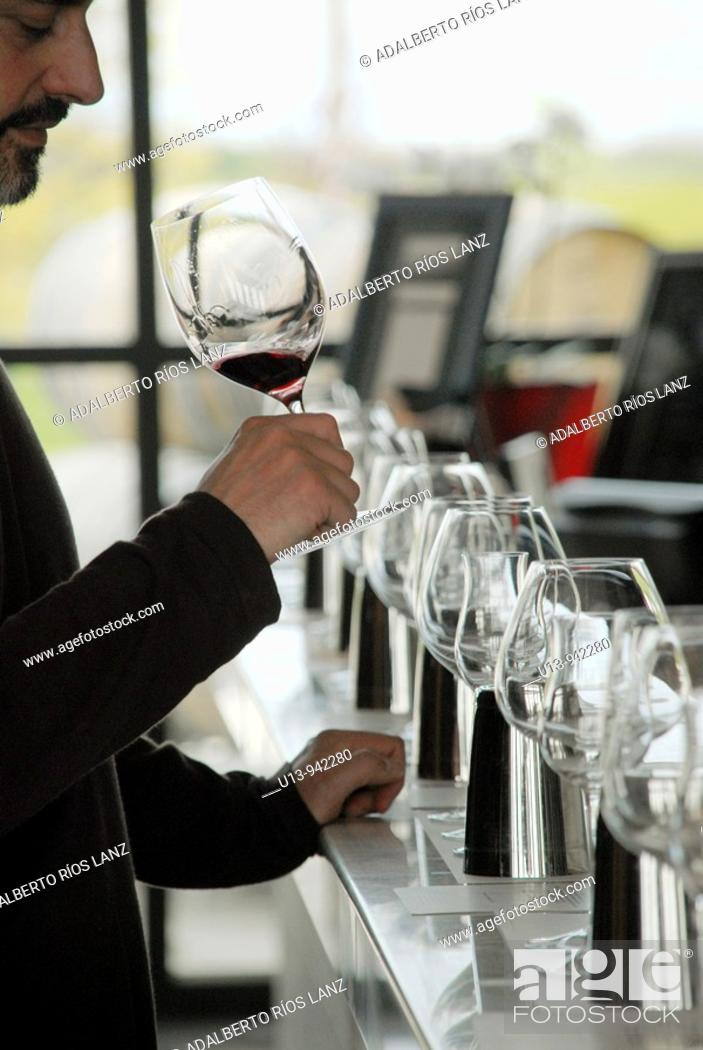 Stock Photo: Stratus, Winery, Niagara, Ontario, Canada.
