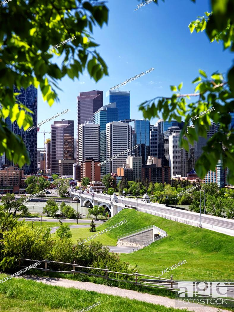 Stock Photo: Artistic summertime scenery of Calgary city downtown skyline view and Centre Street Bridge over Bow river framed by green tree leaves.