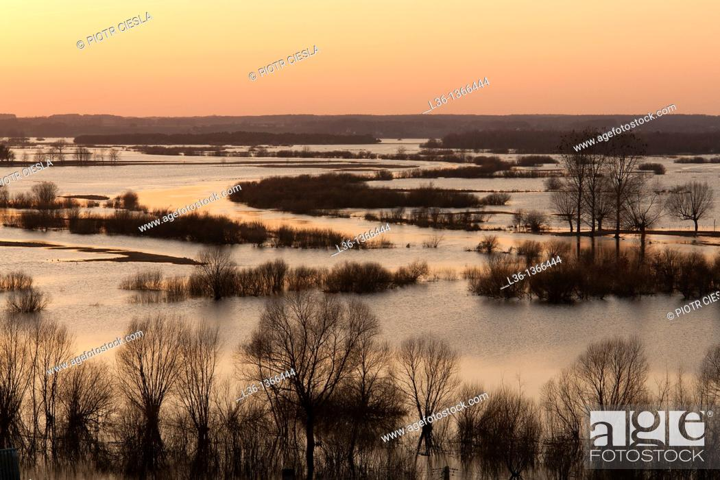 Stock Photo: Biebrza National Park Spring floodplain of Biebrza and Narew river Sunset Poland . View from Strekowa Gora.