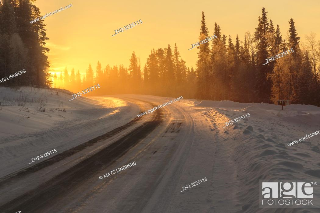 Imagen: Winter landscape in direct light with road leading in to the light, fog and mist over the road, Gällivare, Swedish Lapland, Sweden.