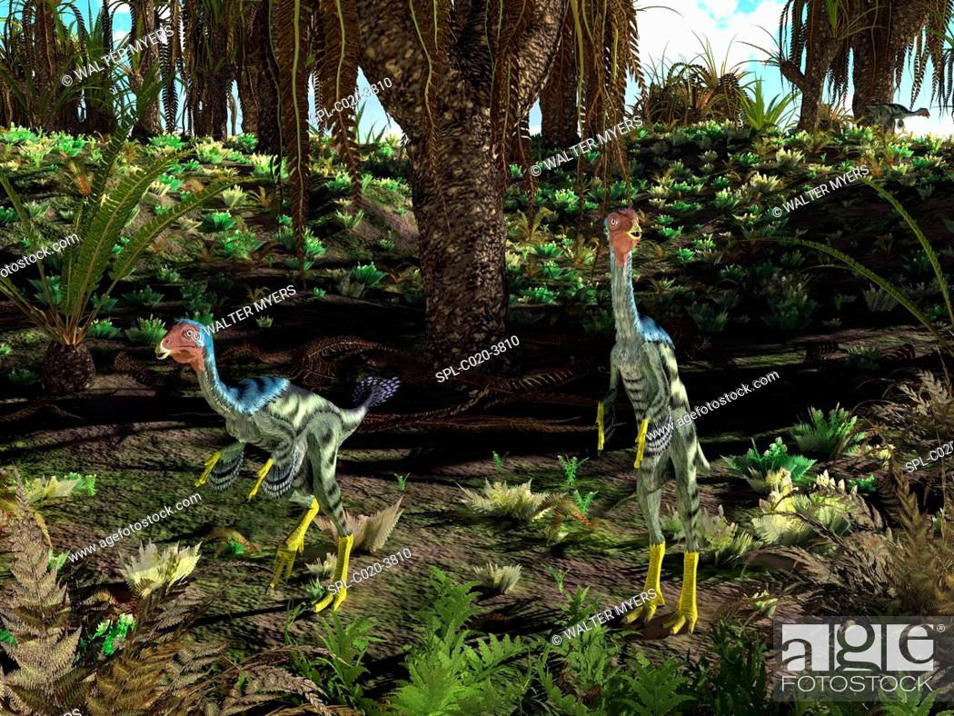 Stock Photo: Artwork of peacock-sized theropod dinosaurs of the genus Caudipteryx wandering a landscape dominated by cycad-like seed plants of the genus Williamsonia 125.