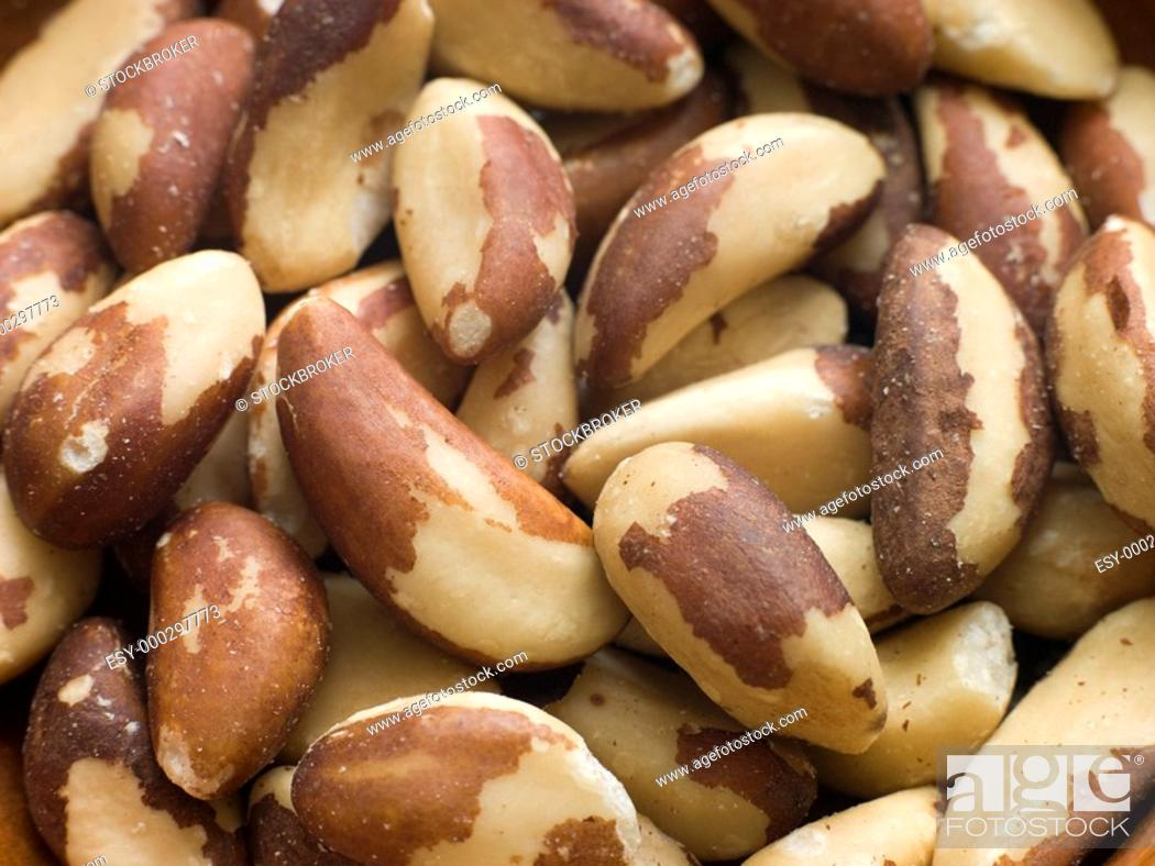 Stock Photo: Brazil Nuts.
