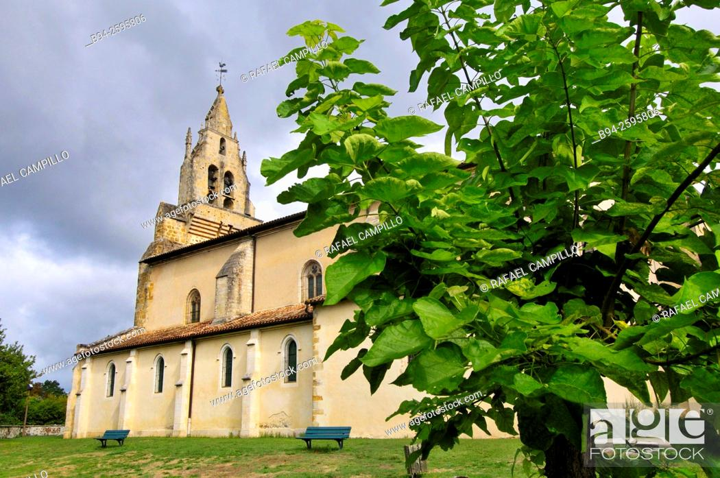 Stock Photo: Parish Church of St. Michael, built by the Benedictines in the nineteenth century. Sabres, commune in the Landes department, Aquitaine region.