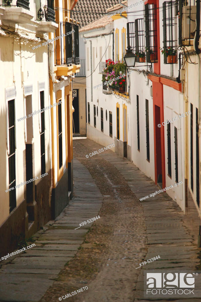 Stock Photo: Typical street. Cordoba, Andalucía, Spain.