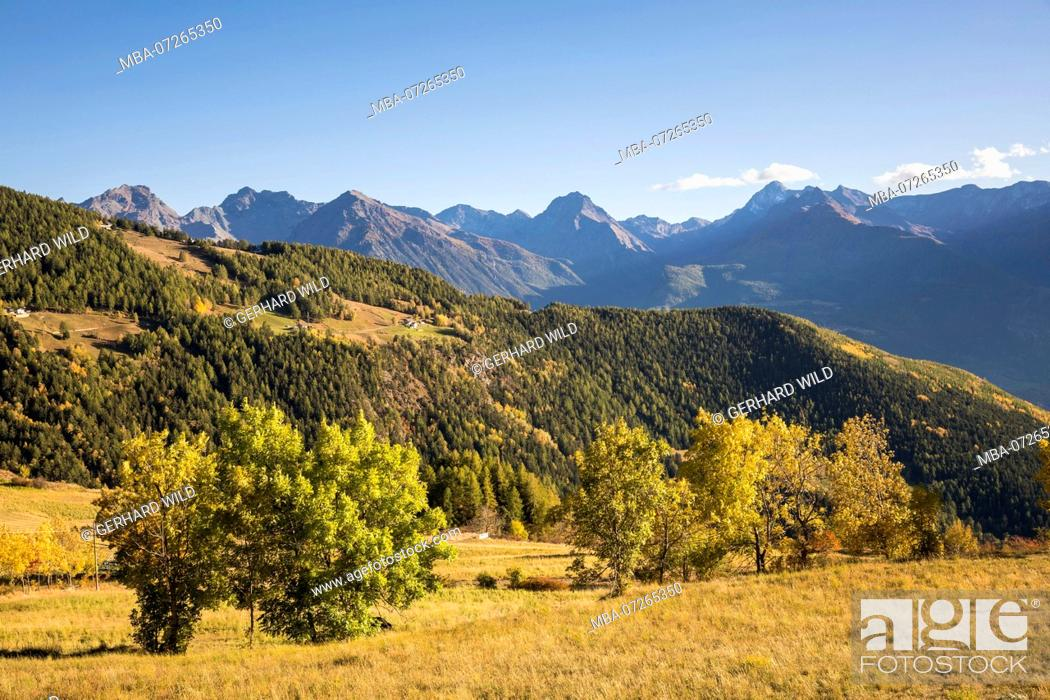 Stock Photo: View from the mountain village Lignan on the autumnal landscape, province Aosta, Aosta Valley, Italy.