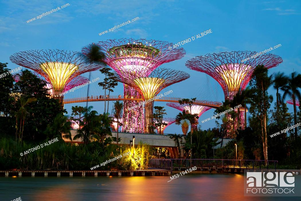 Stock Photo: Night view of The Supertrees Grove at Gardens by the Bay.
