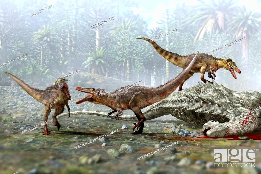 Stock Photo: Austroraptor dinosaurs. Artwork of a group of three Austroraptor dinosaurs scavenging on the dead body of a larger dinosaur.