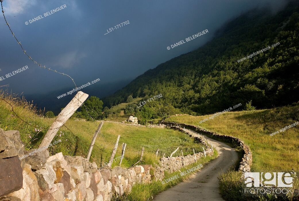 Stock Photo: Path leading La Peral, Somiedo Nature Reserve, Asturias, Spain.