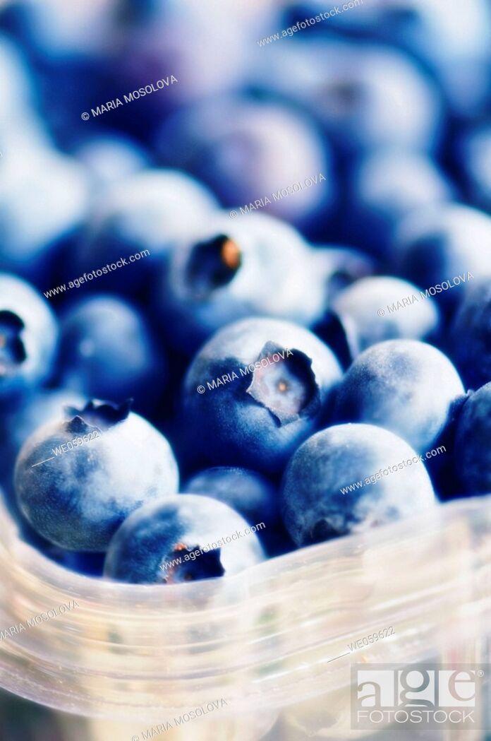 Stock Photo: Supermarket blueberries. Vaccinium corymbosum. January 2007, Maryland, USA.