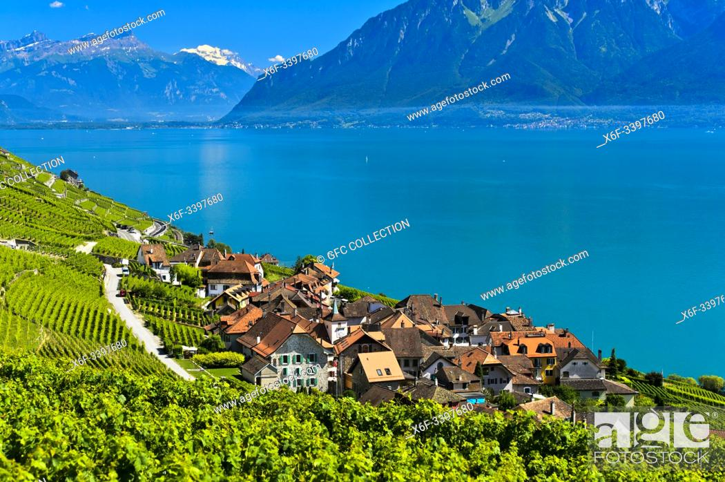 Photo de stock: Winegrowing village Epesses at Lake Geneva in the UNESCO-listed Lavaux vineyard region, Vaud, Switzerland.