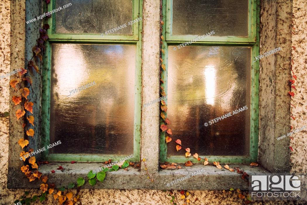 Stock Photo: Old window and ivy at the Claremont colleges of Upland, California.