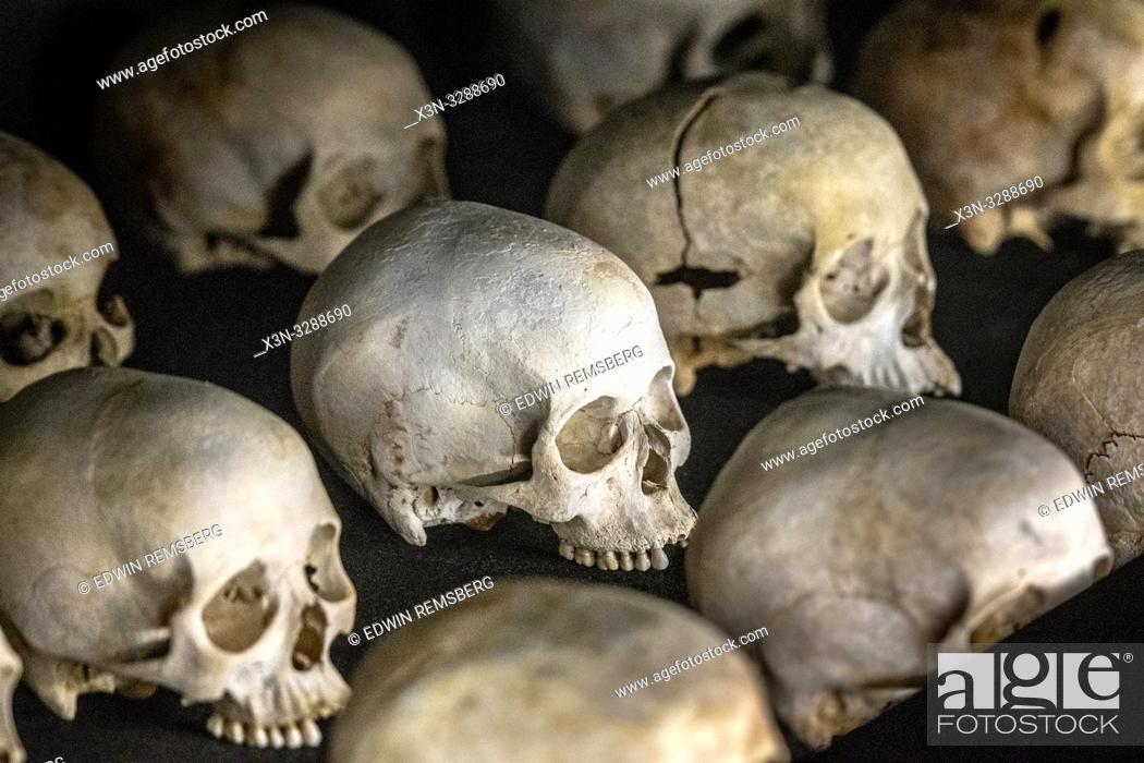 Photo de stock: Damaged skulls of known victims of the 1994 Rwandan Genocide remain interred inside of of the Kigali Genocide Memorial as a testament to those lost in the.