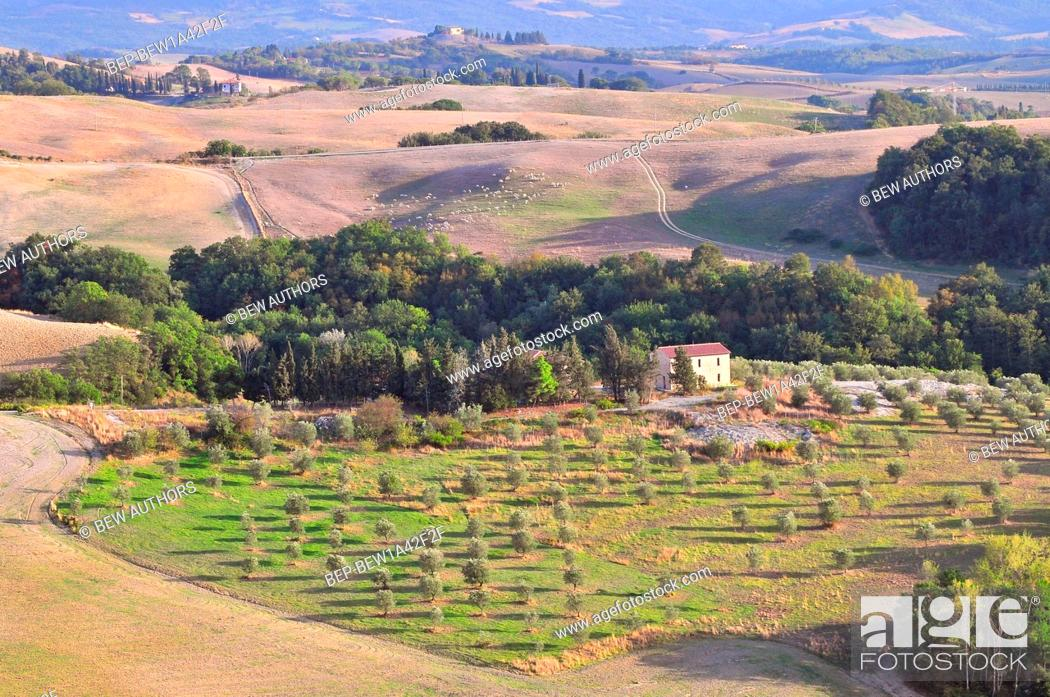 Stock Photo: Tuscany landscape near Volterra Italy.