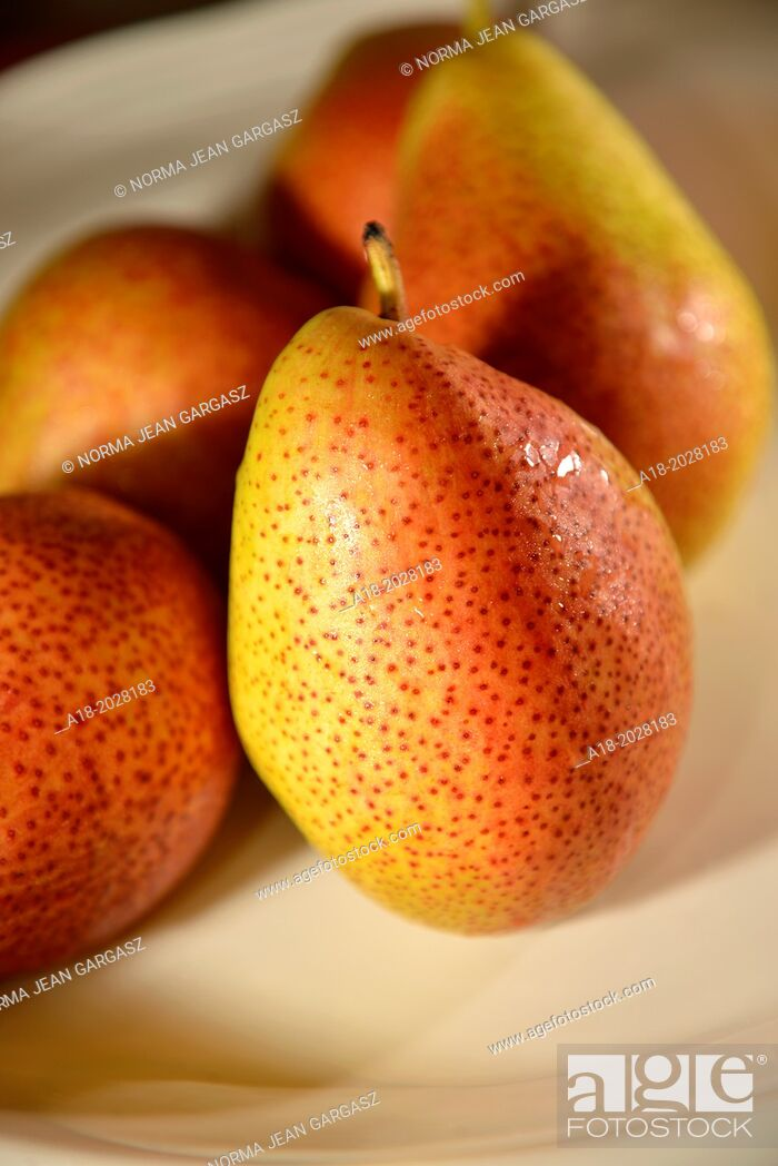 Stock Photo: Forelle variety of pear fruit.