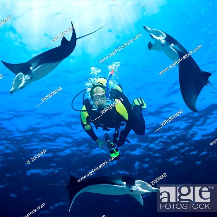 Stock Photo: Diver and mantas.