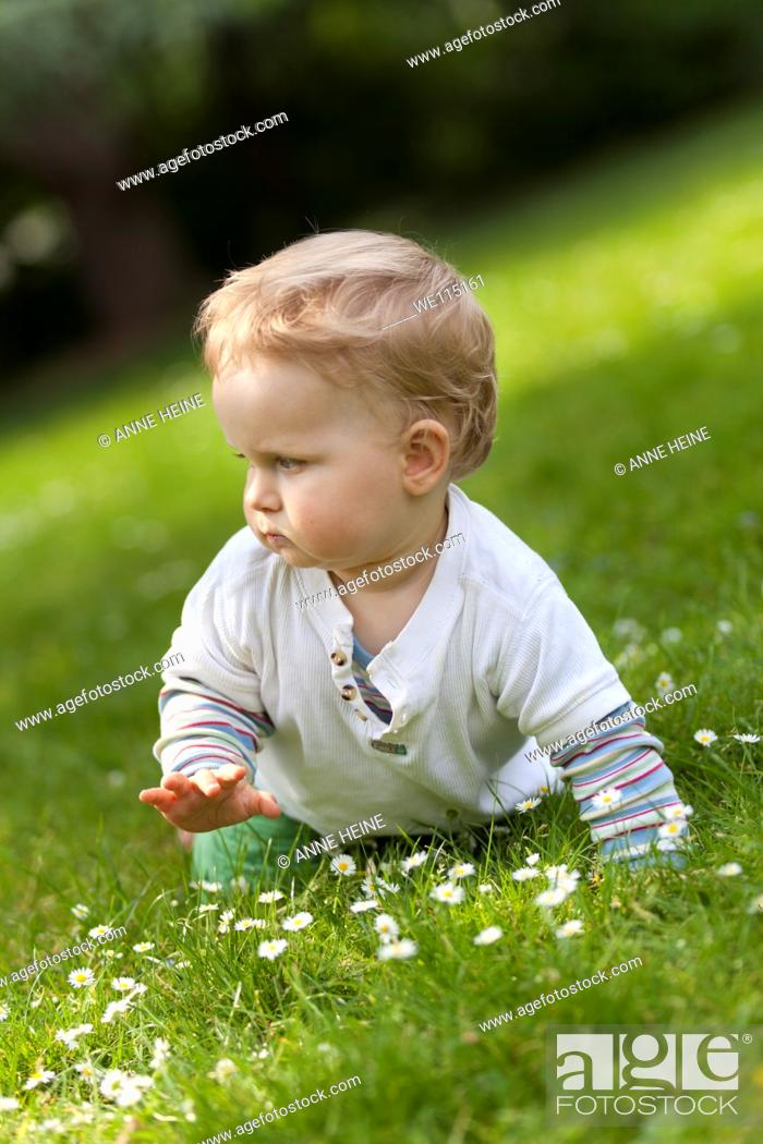 Stock Photo: baby crawling on grass with flowers.
