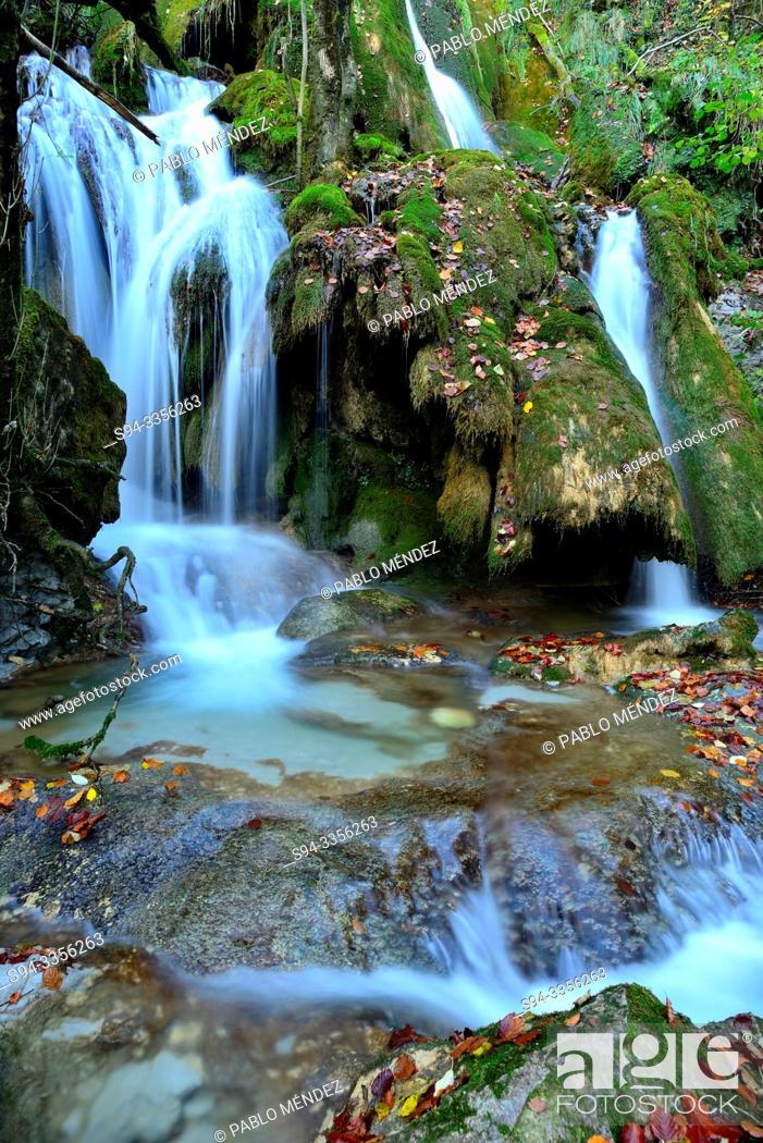 Stock Photo: Toberia waterfall in a beech wood of Andoin, Alava, Spain.