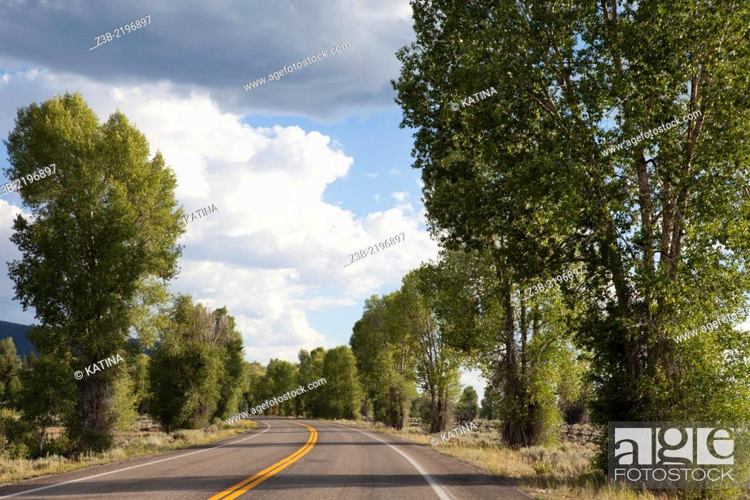 Imagen: Driving along a tree-lined street on a sunny summer day in Grand Teton National Park, Wyoming, USA.