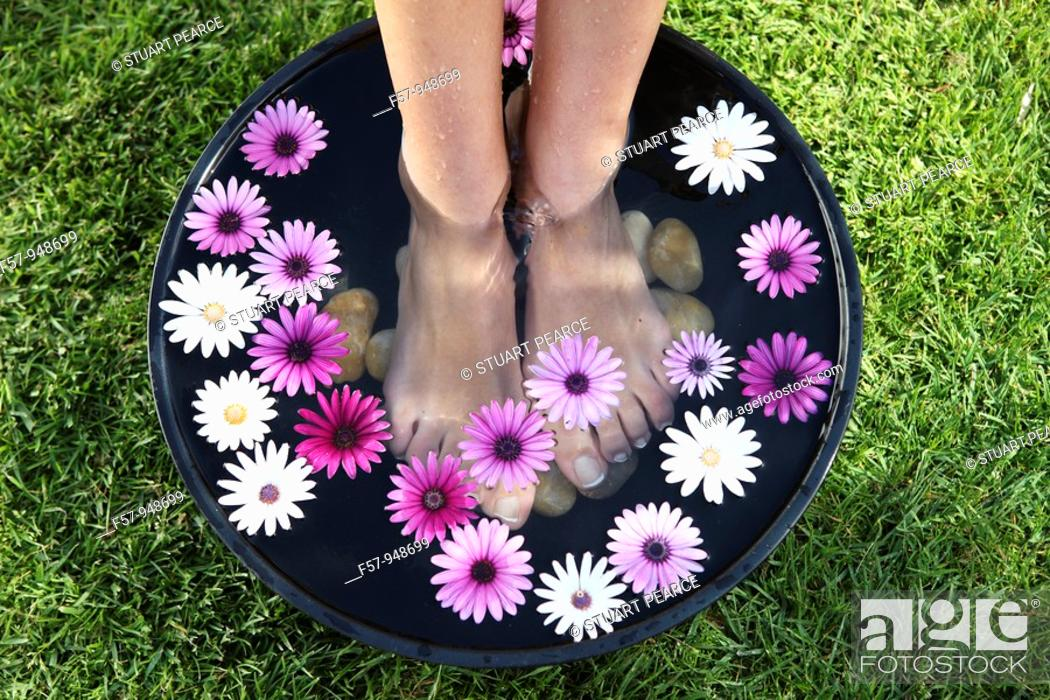 Stock Photo: Feet treatment with peebles and flowers.