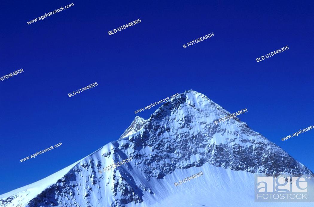 Stock Photo: day, Alps, cow, blue, Bernhard, alps.