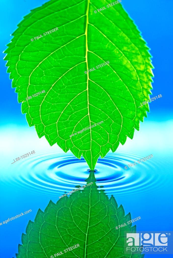 Stock Photo: Water,.