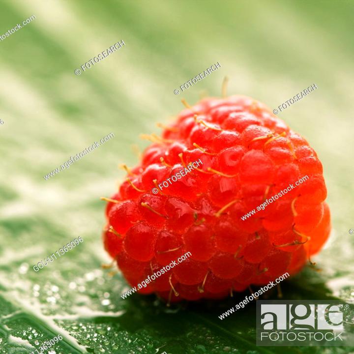 Stock Photo: Still life of red raspberry on banana leaf.