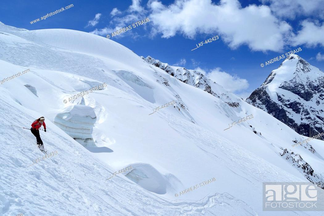 Stock Photo: Female backcountry skier downhill skiing in front of Koenigspitze, Monte Cevedale, Ortler range, South Tyrol, Italy.