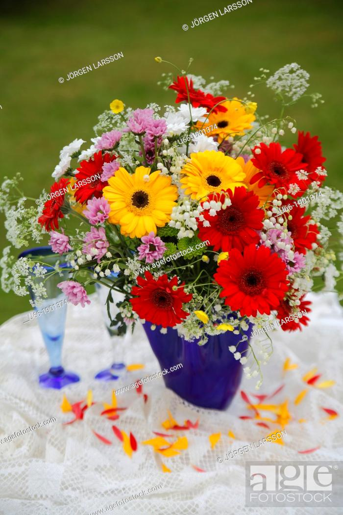 Imagen: Flowers, outdoor, Sweden.