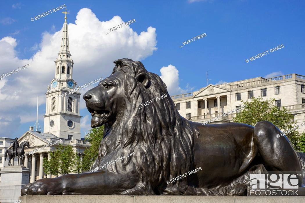 Stock Photo: Trafalgar Square lion with St Martin-in-the-Field church in the background, London, England.