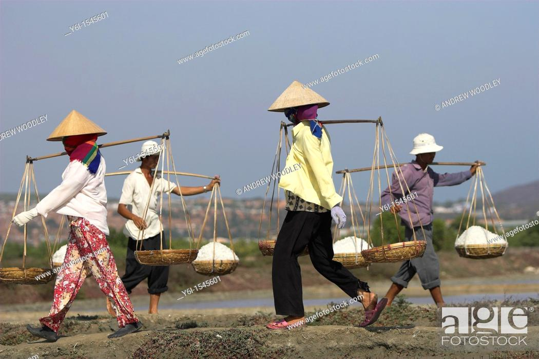 Stock Photo: Workers carry salt baskets along dykes between salt ponds Viatnam.