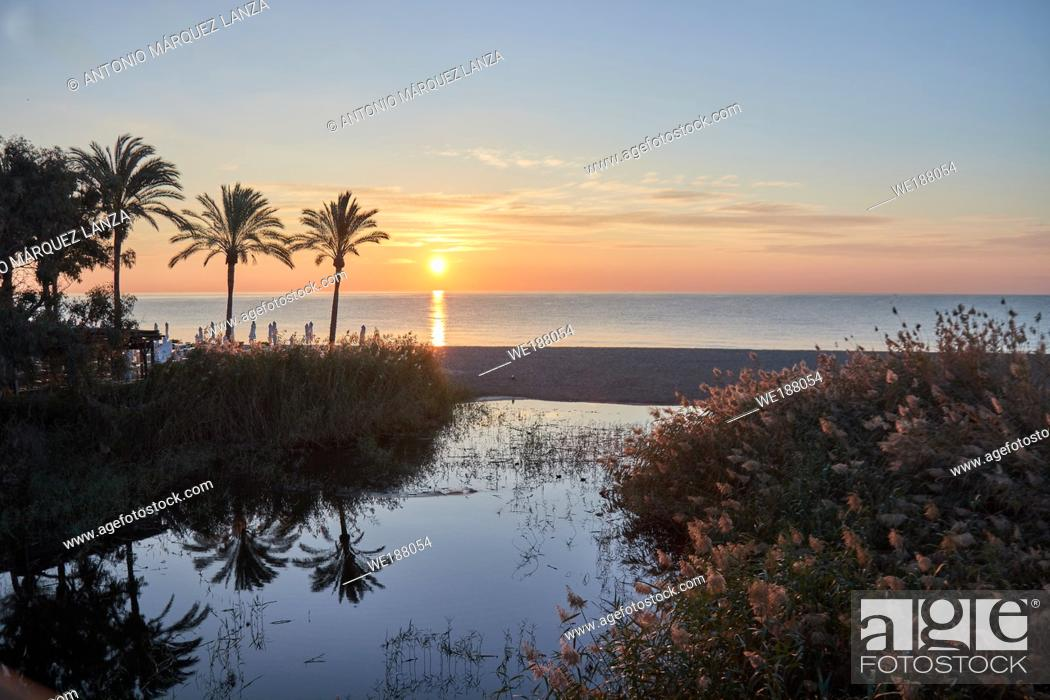Stock Photo: sunrise in puerto Banus at the beach with a palm tree over the sand and blue sky and river.